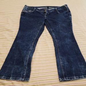 Women's Amethyst Jeans Size 20